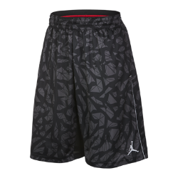 Jordan Fragmented Ele Men's Basketball Shorts