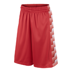 LeBron Brutal Men's Basketball Shorts
