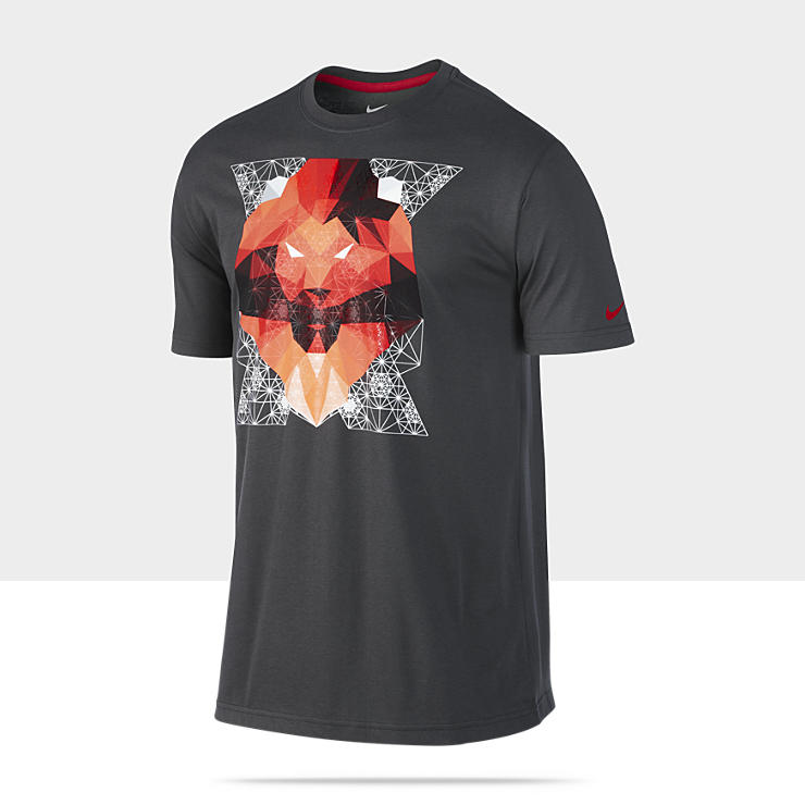 LeBron Optic Lion&nbsp;&ndash; Tee-shirt pour Homme