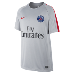 Игровая футболка для школьников Paris Saint-Germain Dry (XS–XL)Игровая футболка для школьников Paris Saint-Germain Dry обеспечивает комфорт как на поле, так и за его пределами.<br>