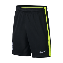 Футбольные шорты для мальчиков школьного возраста Neymar Nike Dry SquadФутбольные шорты для мальчиков школьного возраста Neymar Nike Dry Squad обеспечивают надежную посадку и комфорт во время тренировки или игры благодаря нескользящему эластичному поясу с прорезиненной лентой.<br>