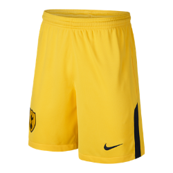 2017/18 Tottenham Hotspur FC Stadium Goalkeeper Older Kids' Football Shorts