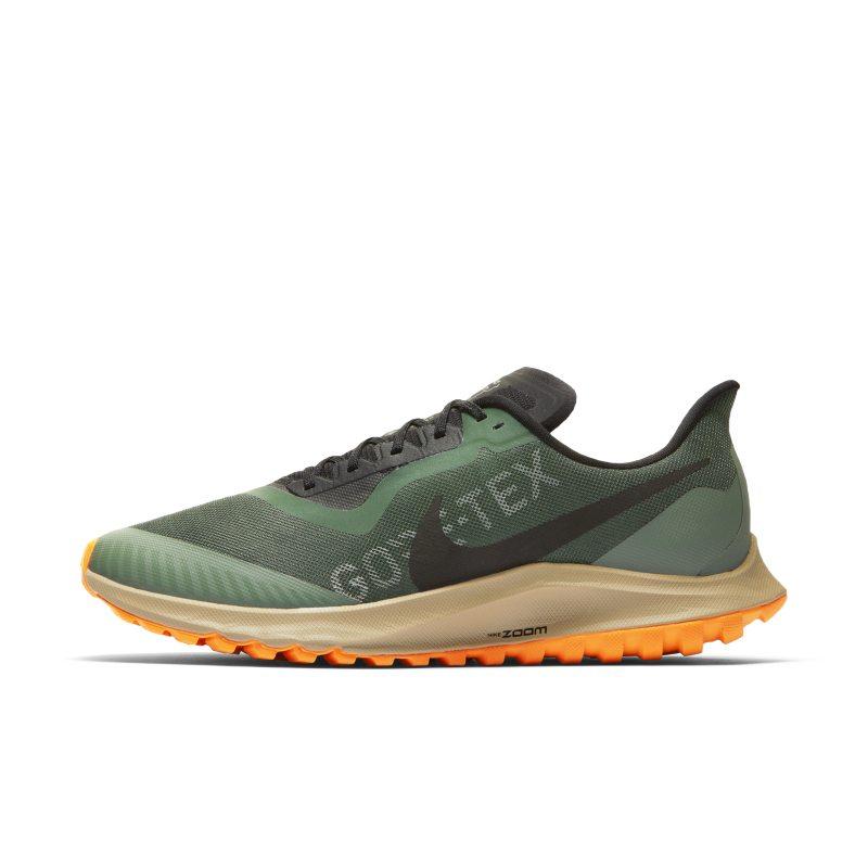Scarpa da trail running Nike Zoom Pegasus 36 Trail GORE-TEX - Uomo - Verde