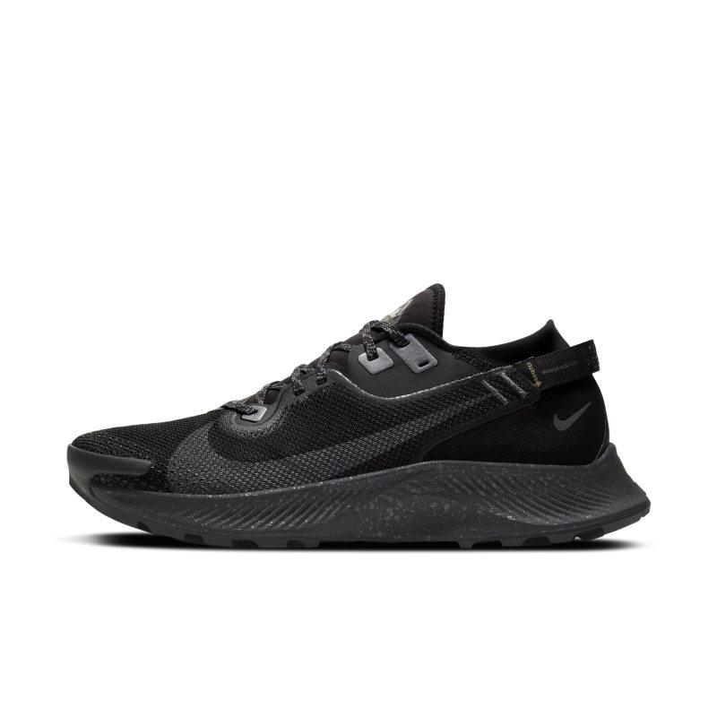 Nike Pegasus Trail 2 GORE-TEX Zapatillas de trail running - Hombre - Negro