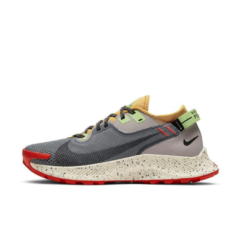 Nike Pegasus Trail 2 GORE-TEX Zapatillas de trail running - Mujer - Negro